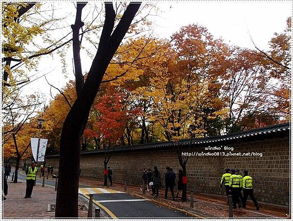 fall_006.JPG