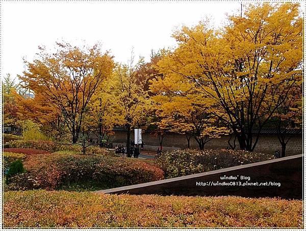 fall_008.JPG