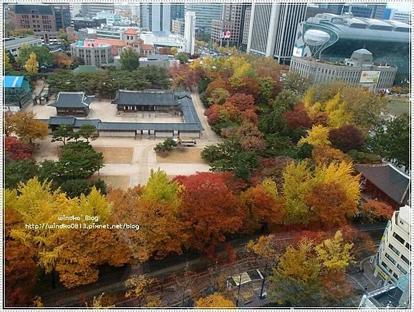 fall_018.JPG