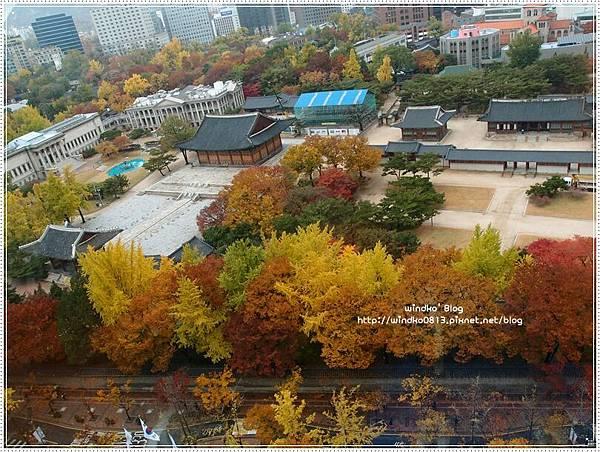 fall_021.JPG