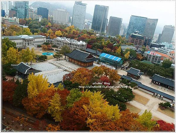 fall_028.JPG