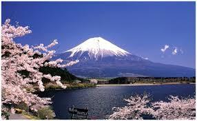 「fujiyama」的圖片搜尋結果
