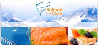 「Chile  salmon」的圖片搜尋結果