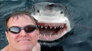 「dangerous selfie」的圖片搜尋結果