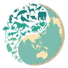 「地球的生物多樣性」的圖片搜尋結果