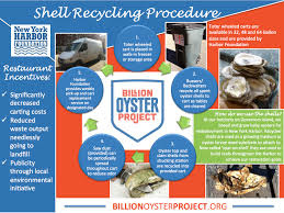 「Billion Oyster Project」的圖片搜尋結果