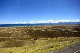 「南美荒地」的圖片搜尋結果