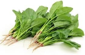 「菠菜」的圖片搜尋結果