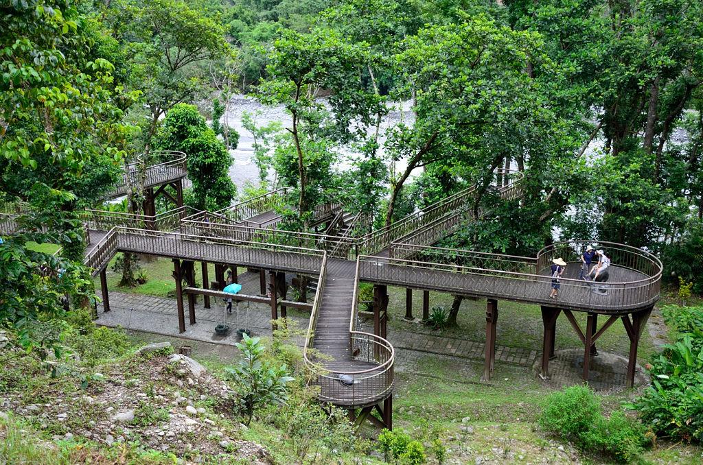 知本國家森林遊樂 葉脈棧道
