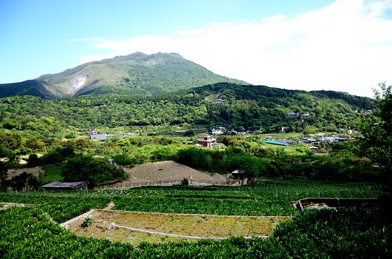 竹子湖 青菜園