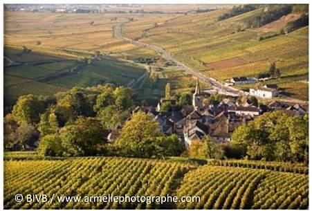 Bourgogne_02.jpg