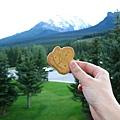 加拿大特產-楓糖奶油夾心餅
