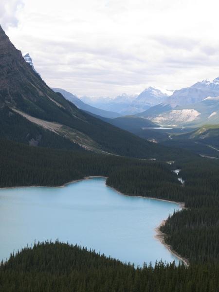 Peyto Lake 還可以看到河道彎曲,真美