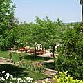 Beringer Vineyard 花園