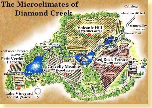 The Microclimates of Diamond Creek.jpg