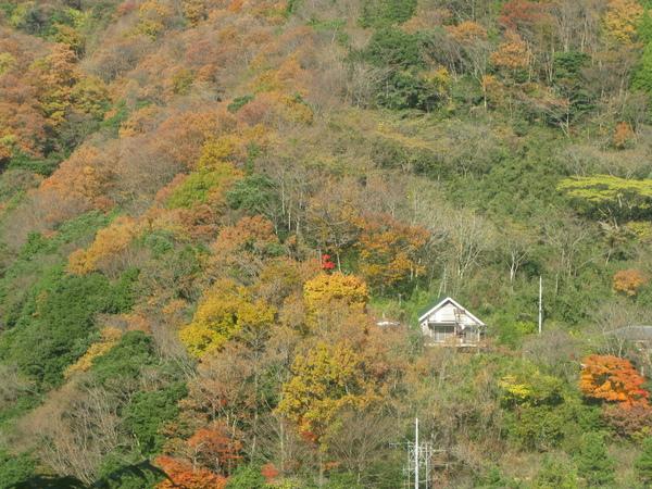 箱根鐵道上的風景