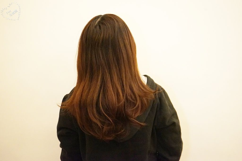 北歐極品 maria nila 洗髮乳健髮素_19