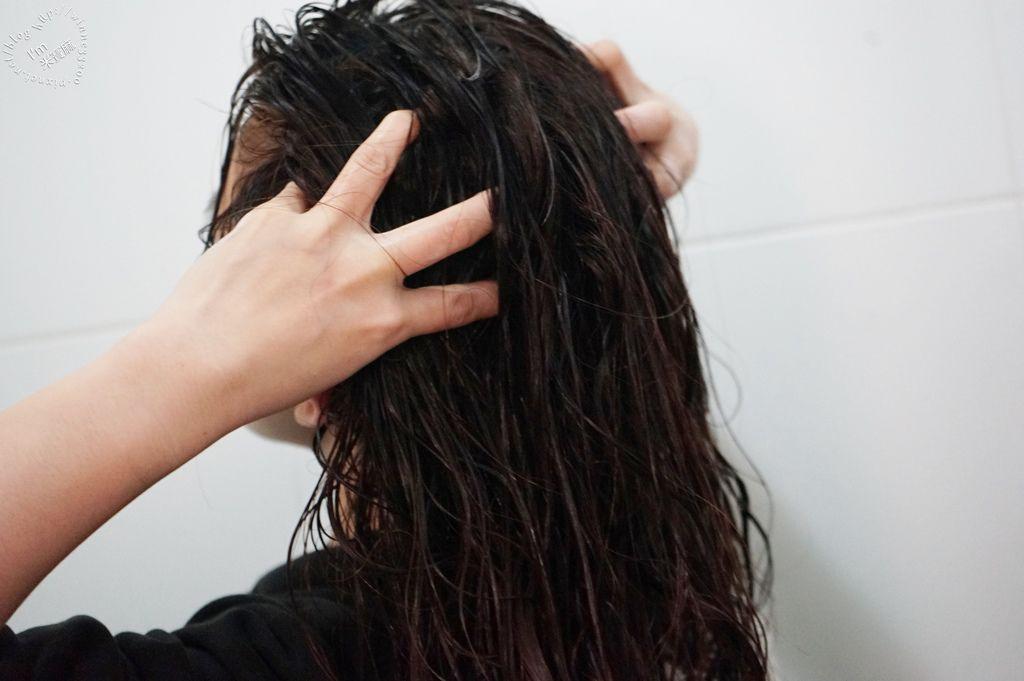 北歐極品 maria nila 洗髮乳健髮素_25