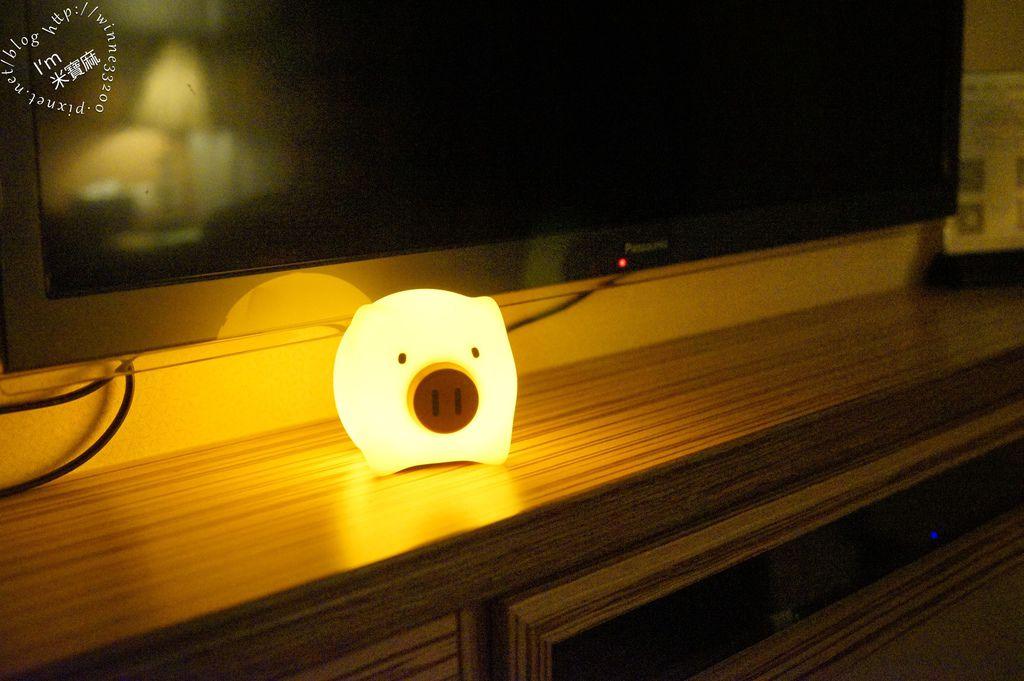 USERWATS小夜燈 (17)