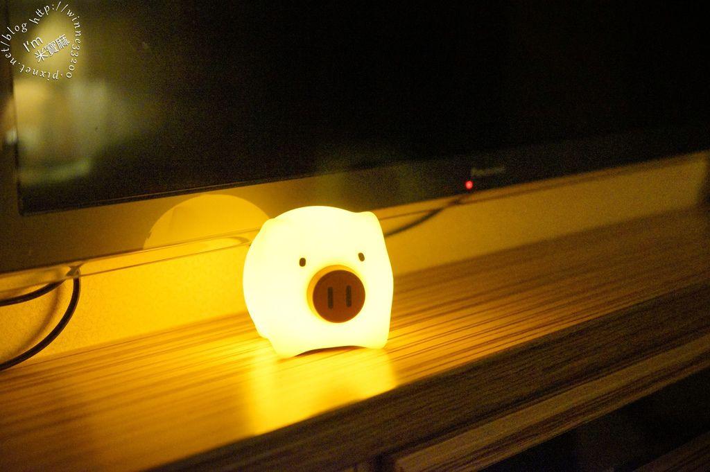 USERWATS小夜燈 (18)