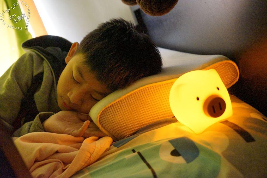 USERWATS小夜燈 (20)