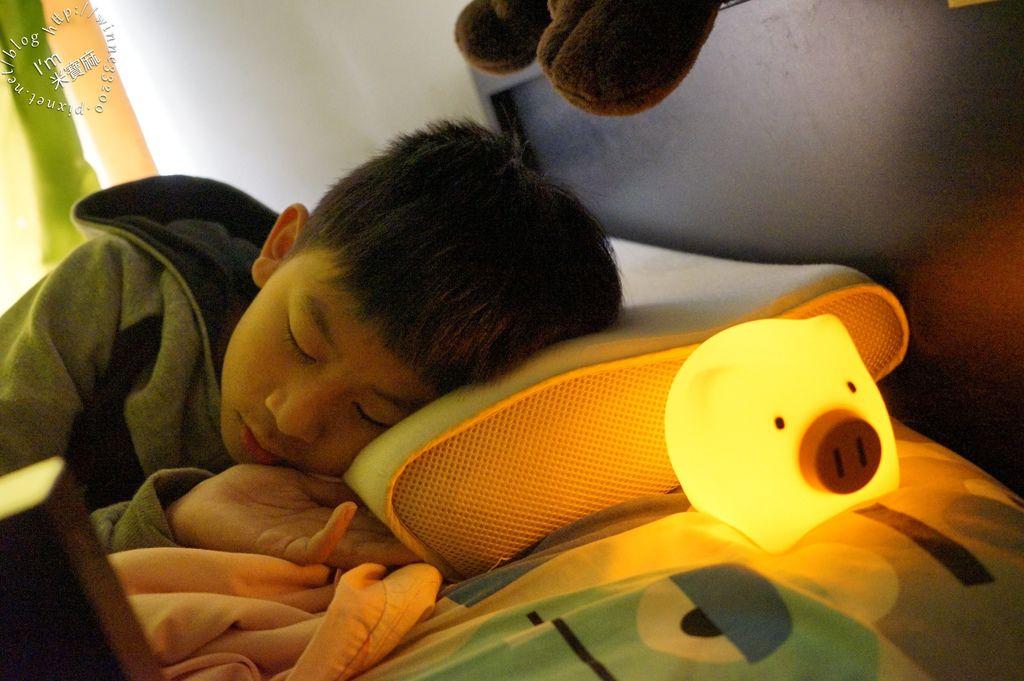 USERWATS小夜燈 (21)