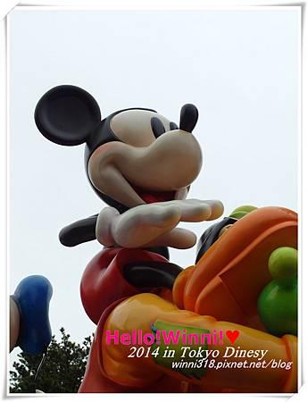 PhotoCap_064.jpg