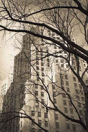 2011 NYC 舊底片