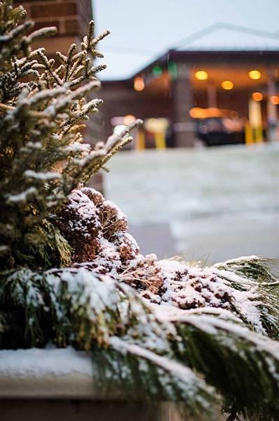 今年第一場雪