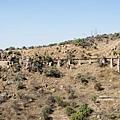 2013 San Miguel-029-364