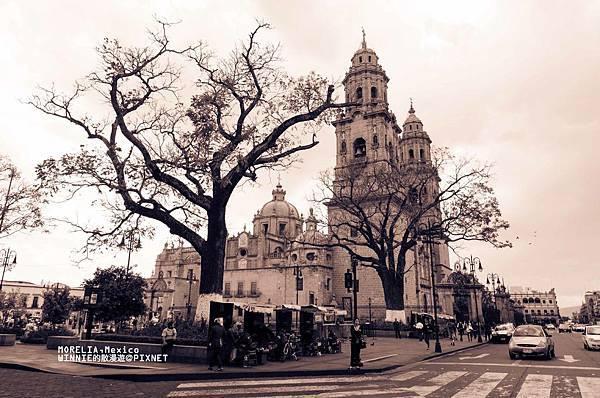 [墨西哥]Morelia 的槍與玫瑰