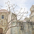 2013 April Oaxaca MX-001-66