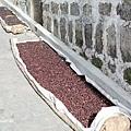 2013 May San Pedro Guat-004-24