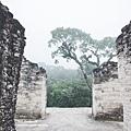 2013 July Tikal Guat-002-60.jpg