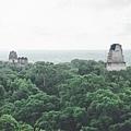 2013 July Tikal Guat-002-113.jpg