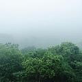2013 July Tikal Guat-002-5