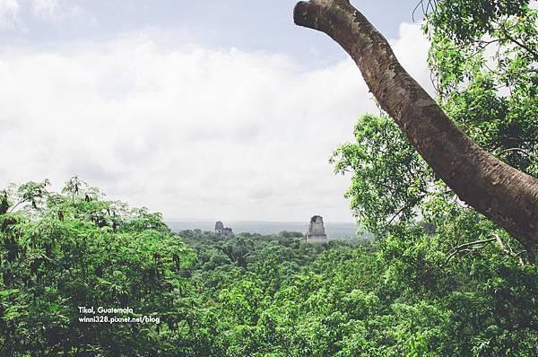 2013 July Tikal Guat-002-145.jpg