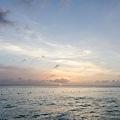 2013 July Isla Mujeres-004-288.jpg