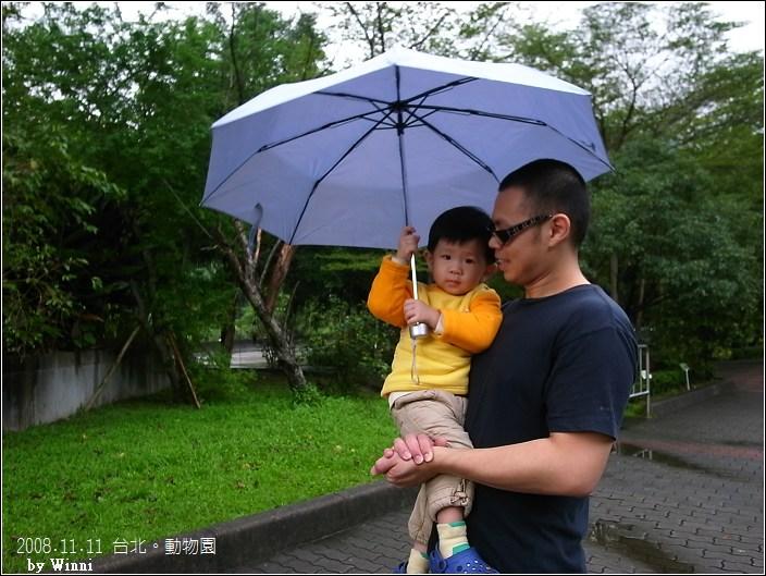 下著雨,和老爸共傘