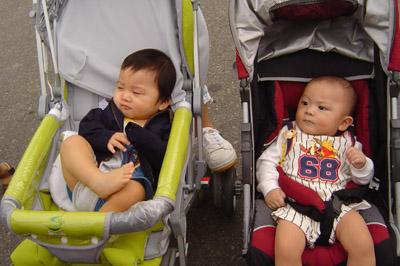 兩個小傢伙