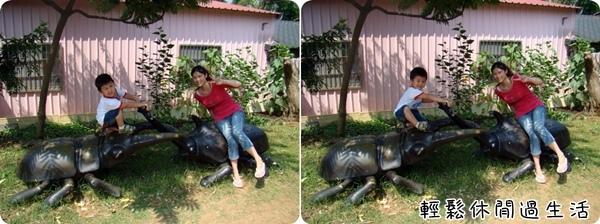 2009 05 17-05甲蟲.jpg