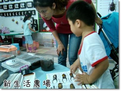 2009 05 17-24甲蟲.JPG