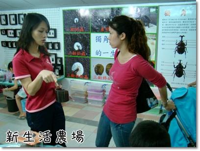 2009 05 17-25甲蟲.JPG