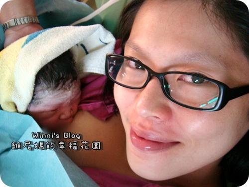 紅豆妮小姐誕生嚕!