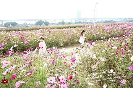 幸福水漾公園 (7).JPG