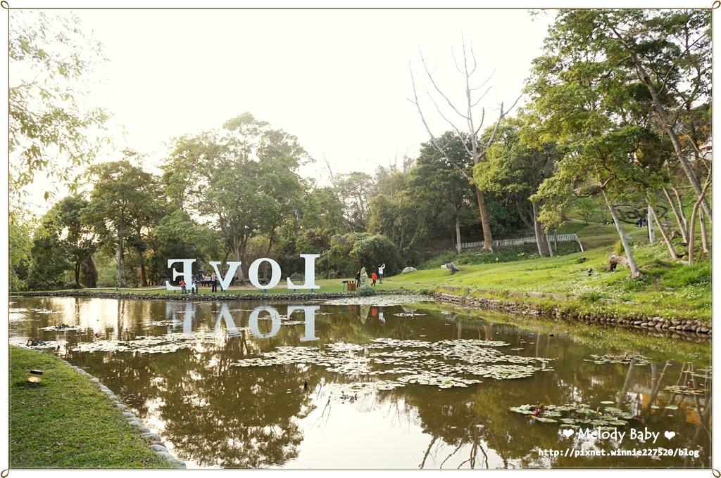 青青湖畔 (12).JPG