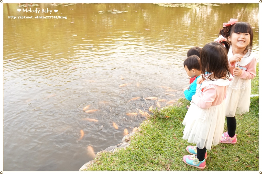 青青湖畔 (14).JPG