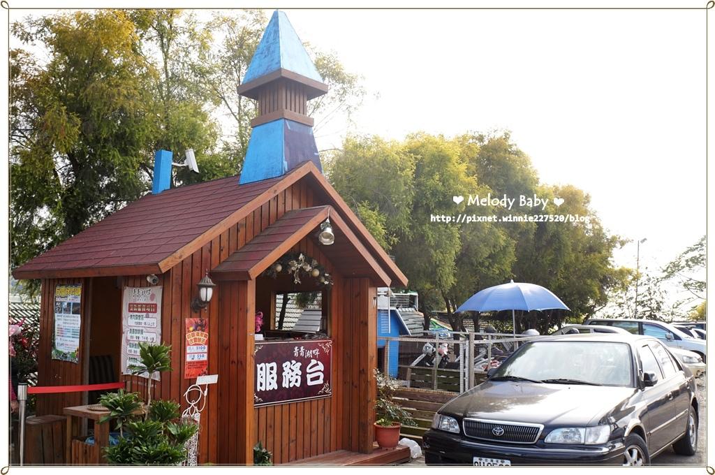 青青湖畔 (24).JPG