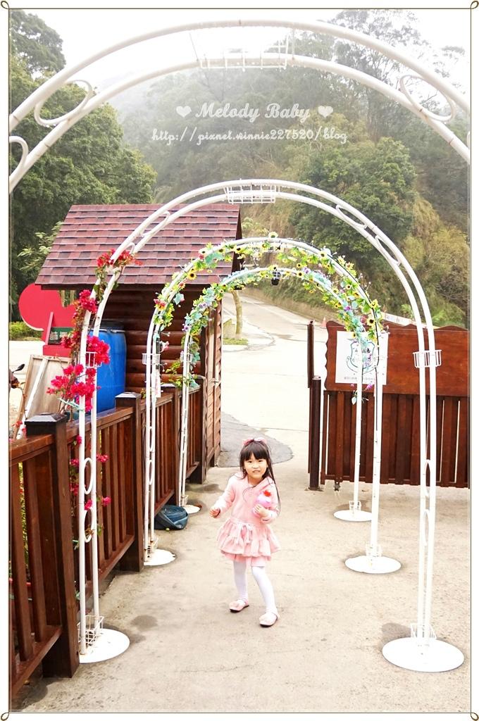 心鮮森林莊園 (34).jpg