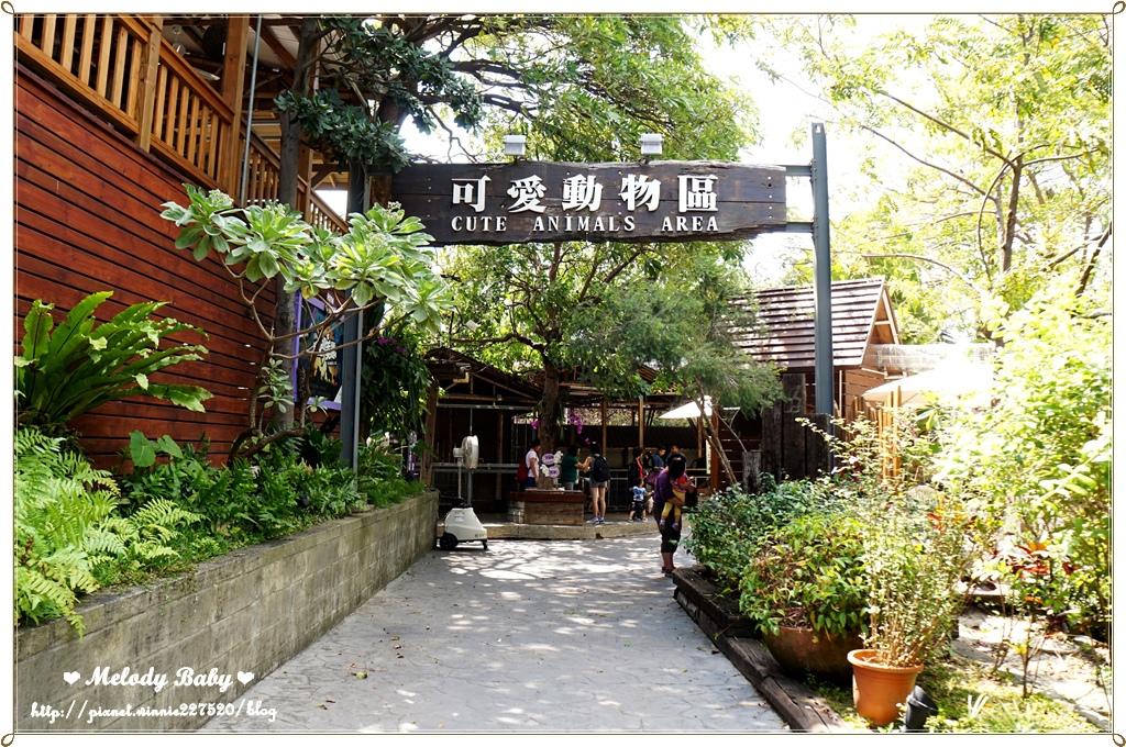 淨園農場 (15).JPG